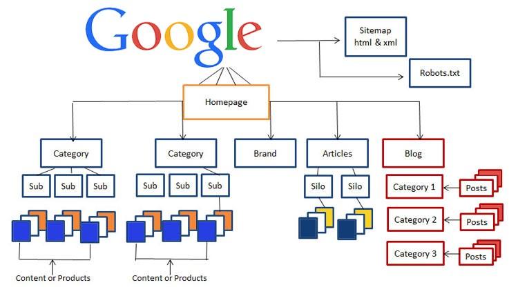 چیدمان و ساختار سایت از نظر گوگل