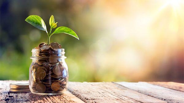 «کامیاب»، بر قله بازدهی سرمایه