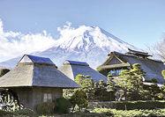 150 اقامتگاه شمال کشور زیر  پوشش «آفتابگردان»
