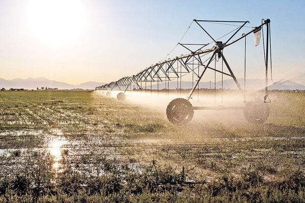 تسریع در برقرسانی به چاههای کشاورزی