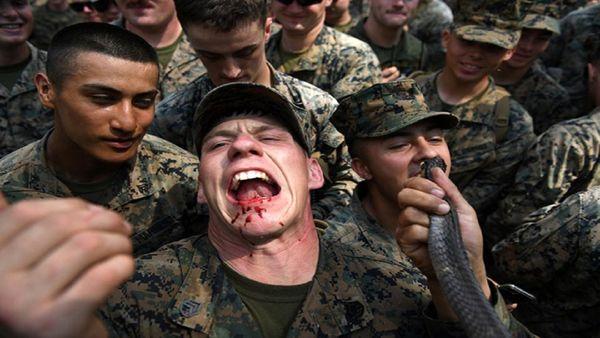 خوردن مارمولک و خون مار در تمرینات نظامی آمریکا+ عکس