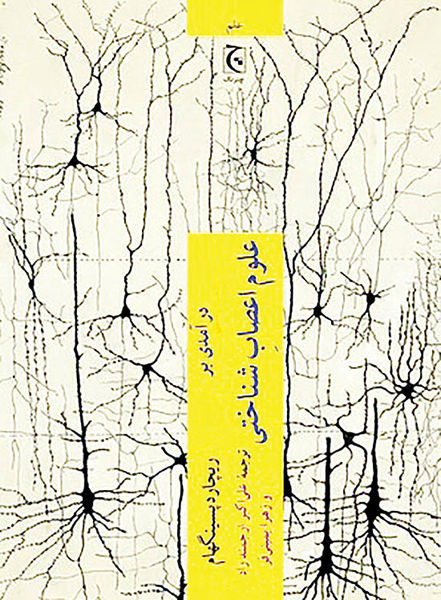 پاسخهای همهفهم  به سوالات علوم اعصاب شناختی