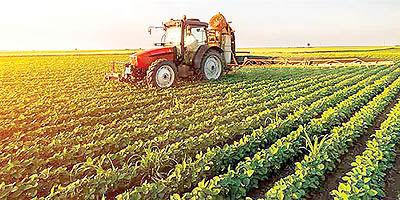 الگوی حمایت از بخش کشاورزی