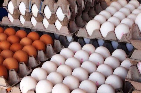 هرشانه تخم مرغ به بیش از ۴۰ هزار تومان رسید
