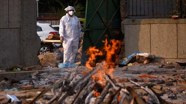 خبری هولناک از شیوع کپک سیاه در بیماران کرونایی!