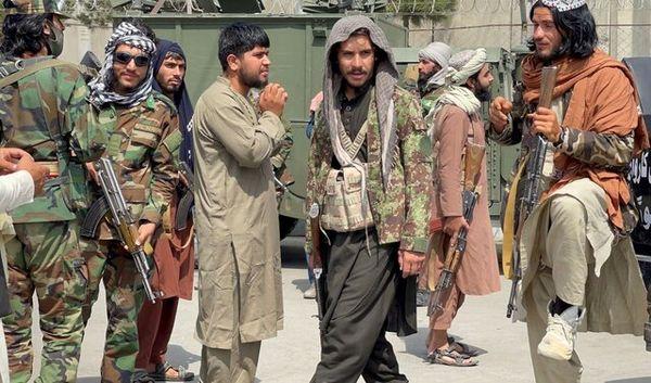 طالبان: جهان به ما 20 ماه فرصت دهد بعد قضاوت کند!