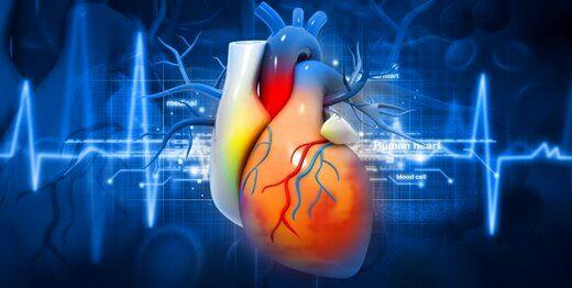 میزان ابتلا به بیماری قلبی در مردان بیشتر است