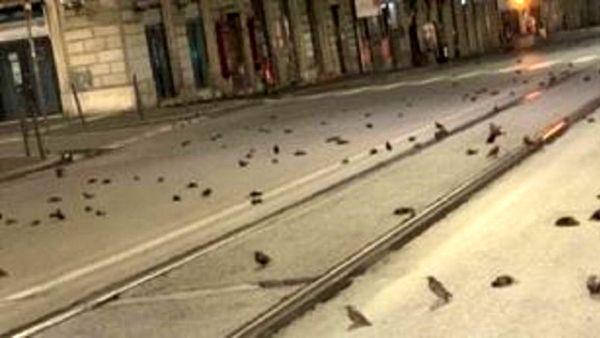 صحنه ای عجیب در خیابان های ایتالیا