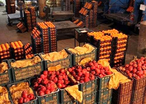 عرضه مستقیم میوه در سراسر کشور