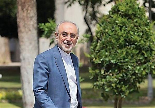 علی اکبر صالحی: تصمیم قطعی برای کاندیداتوری نگرفتهام