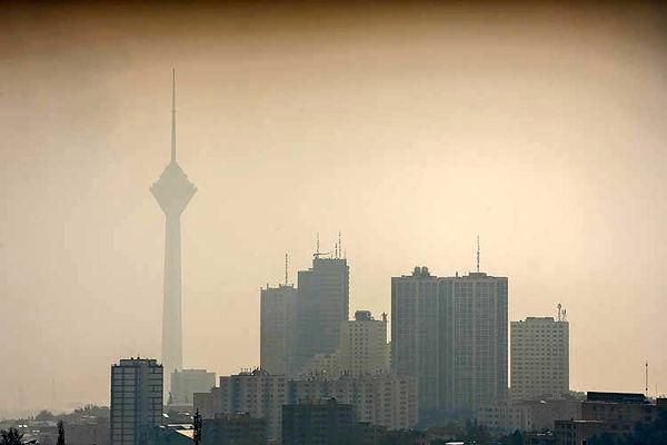 متهم ردیف اول «مهدود» پایتخت