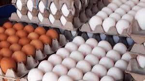 پشت پرده افزایش قیمت تخممرغ چیست؟