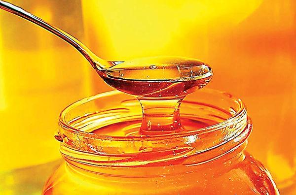 تثبیت استاندارد عسل  با پیگیری اتحادیه زنبورداران