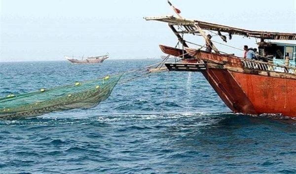 شناور غیرمجاز صید ترال در گناوه توقیف شد