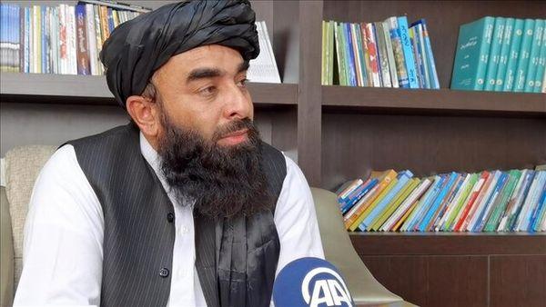 طالبان از چه راهی پول در میآورند؟
