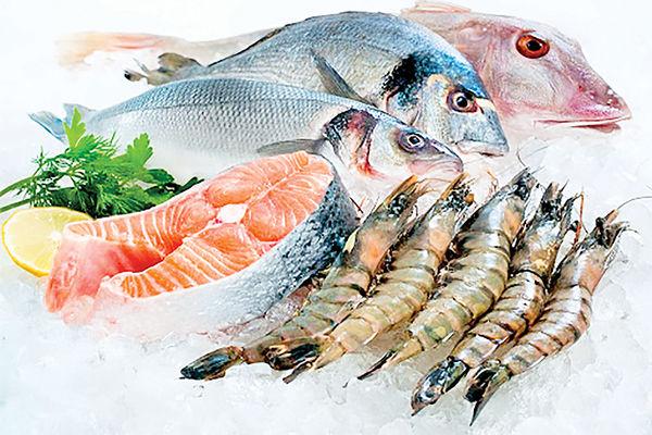 شیب تند افزایش قیمت ماهی در بازار