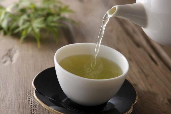 ترکیبات موجود در چای سبز چه تاثیری بر سرطان دارند؟