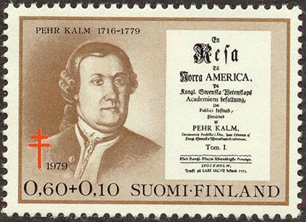 پهر کالم، کاشف و اقتصاددان سوئدی