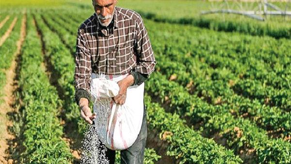 دست کوتاه کشاورزان از نهادههای یارانهای