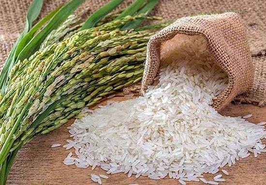 برنج طارم به بازار گواهی سپرده بورس کالا وارد میشود