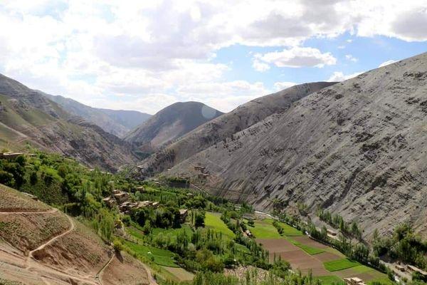 کوچ اجباری؛ ظلمی دیگر در کارنامه طالبان