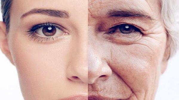خوراکی هایی که با روند پیری مبارزه میکنند