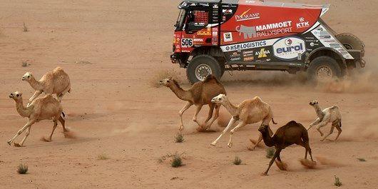 شرکت هیأت صهیونیستها در یک مسابقه ورزشی به میزبانی عربستان