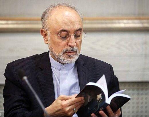 گزارش علی اکبر صالحی از آغاز بحران هسته ای منتشر شد