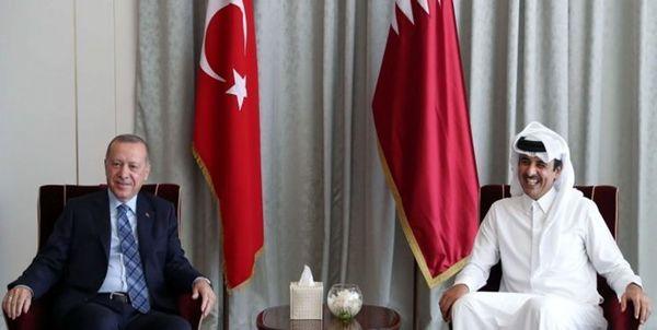 گفت و گوی اردوغان و امیر قطر درباره تحولات منطقه
