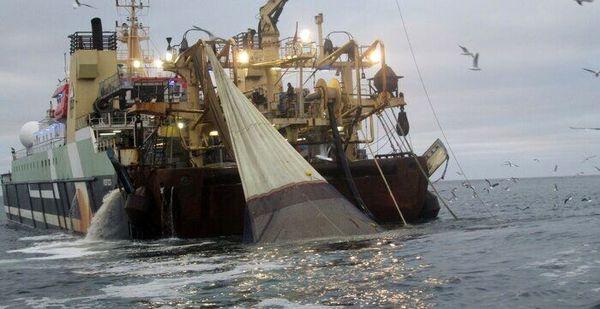 توقیف 2 فروند کشتی صید ترال در بندر جاسک