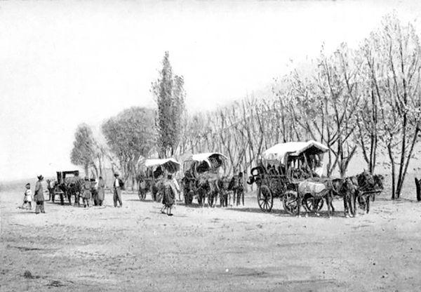 تجارت در جادههای مالرو