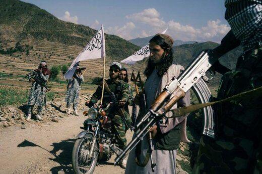 طالبان مدعی نابودی یک گروه داعشی شد