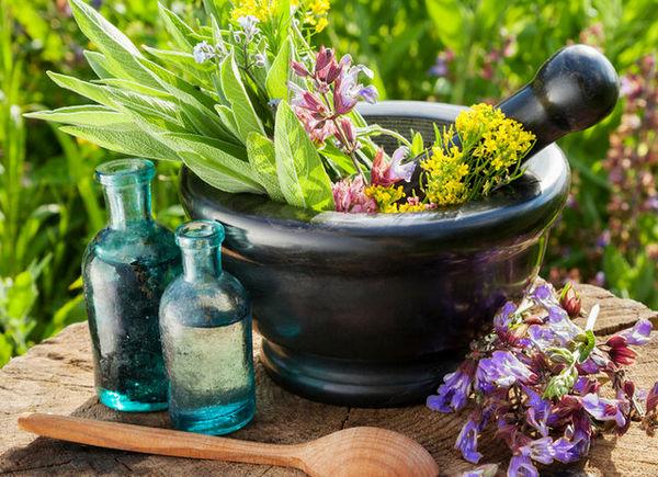 ۷ باور اشتباه درباره گیاهان دارویی و طبسنتی در همهگیری کرونا
