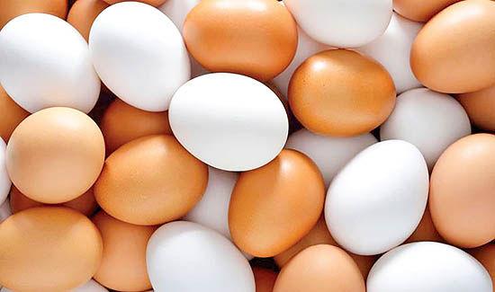 ریشهیابی اختلال در بازار تخممرغ
