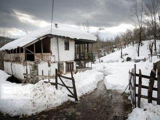 وضعیت زندگی در روزهای برفی رشت