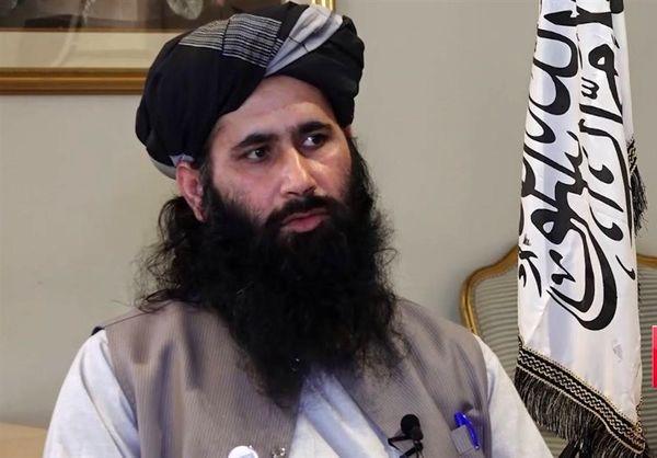 طالبان  پناه دادن به رهبر القاعده را رد کرد