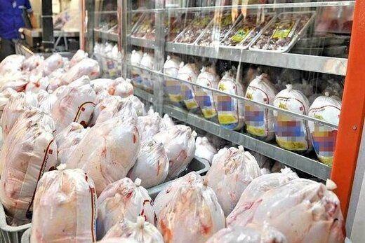 فروش مجدد مرغ قطعه بندی از امروز