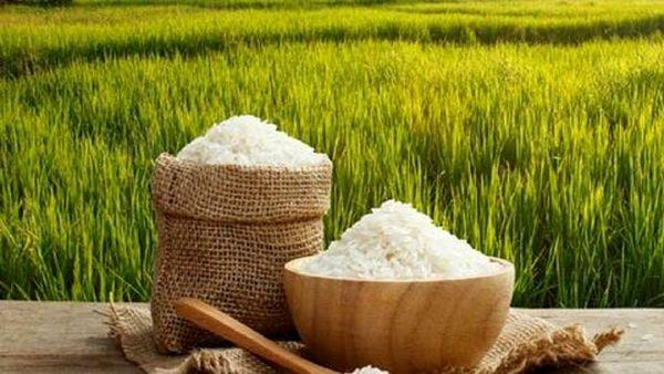 ممنوعیت واردات برنج لغو شد