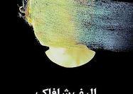 ترجمه مقالاتی از نویسنده «ملت عشق»