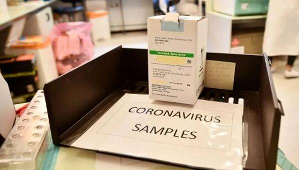 اخبار ضد و نقیض شیوع گونههای جدید ویروس کرونا در پاکستان