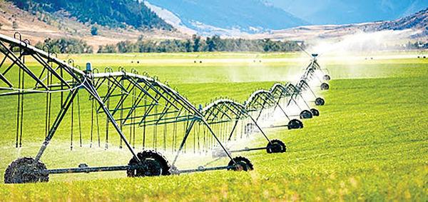 سهم کشاورزی از اشتغال کردستان