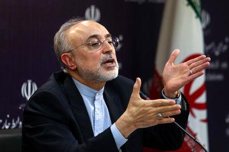 واکنش صالحی به احتمال کاندیداتوریاش در انتخابات