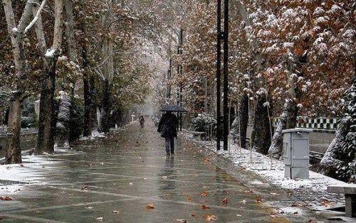 احتمال بارش برف فردا در تهران