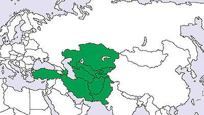 اکوتا؛ گامی بلند بهسوی تجارت آزاد منطقهای