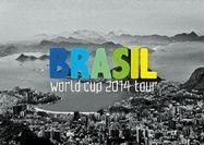 سرگردانی مسافران برزیل 2014