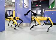 بازار در انتظار بزرگترین دستاورد روباتیک