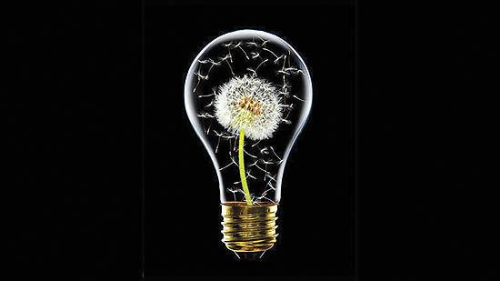 چرا وجود موانع به نفع نوآوری است؟