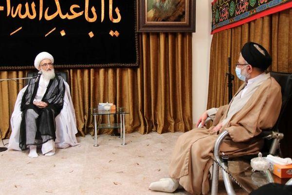 وزیر اطلاعات با آیت الله نوری همدانی دیدار کرد