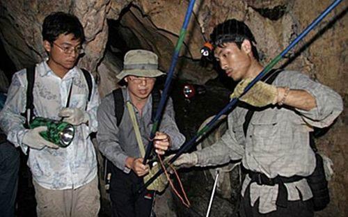 عکس جستجوی خفاش ها در غار
