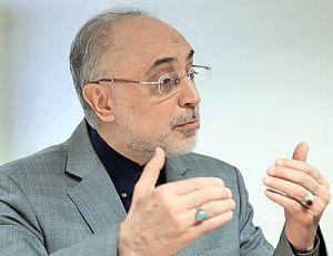 صالحی: روند مذاکرات  هستهای جای نگرانی ندارد